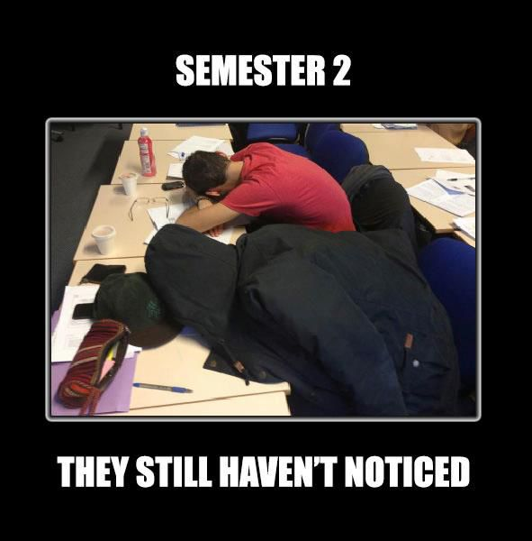 SEMESTER 2: They still haven