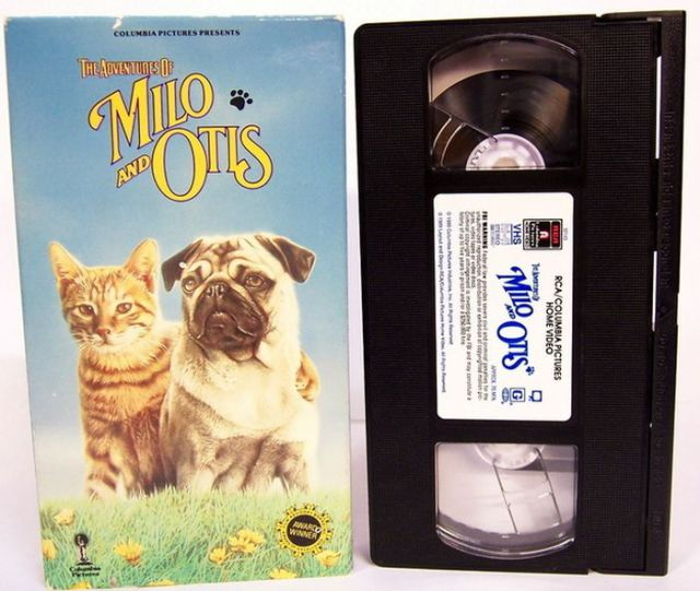 Do You Remember These Great Videos from Childhood?