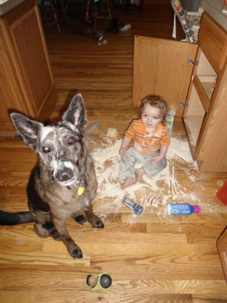 It's a Good Idea to Never Leave Children Alone