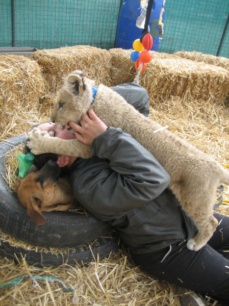 A Petting Zoo with a Difference