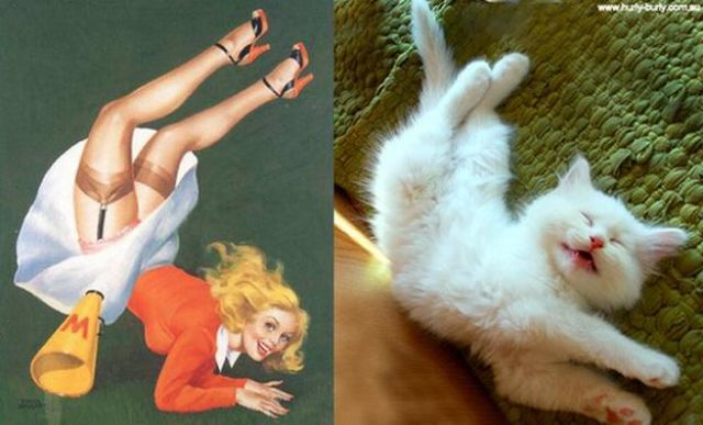 Cats Do Pin-Up Posters PURR-fectly