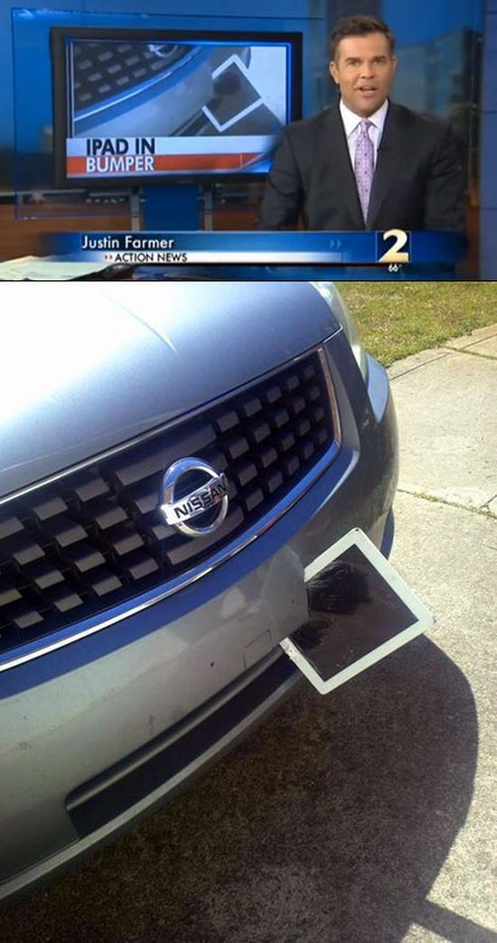 You Won't Believe What Flew into This Woman's Car
