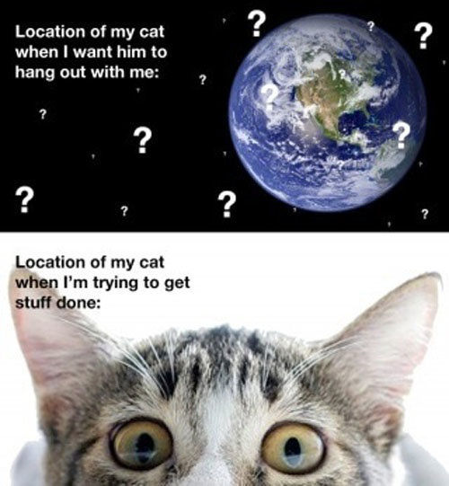 There Are Always More Questions Than Answers…