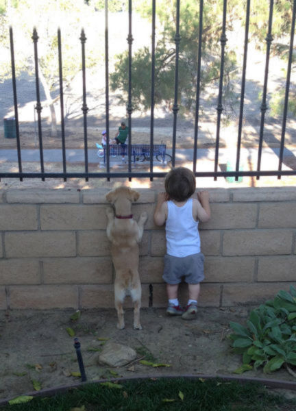 Dogs Are Kids' Best Buddies Too