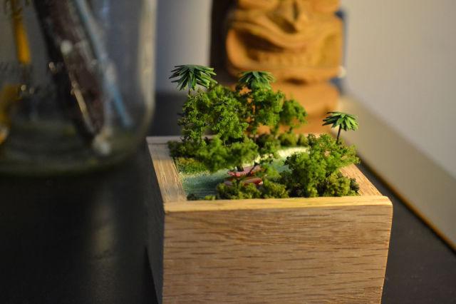 A Small Jungle Cruise Model in a Box