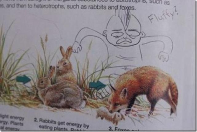 Bored School Kids are the Best Text Book Vandals Ever