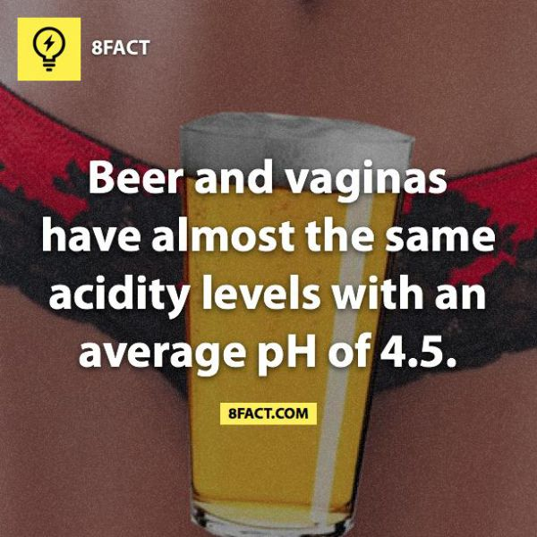 Real Facts That Are Probably Useless to Know