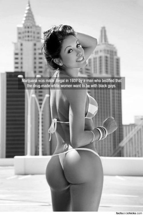 Hot Girls Make These Facts Even More Interesting
