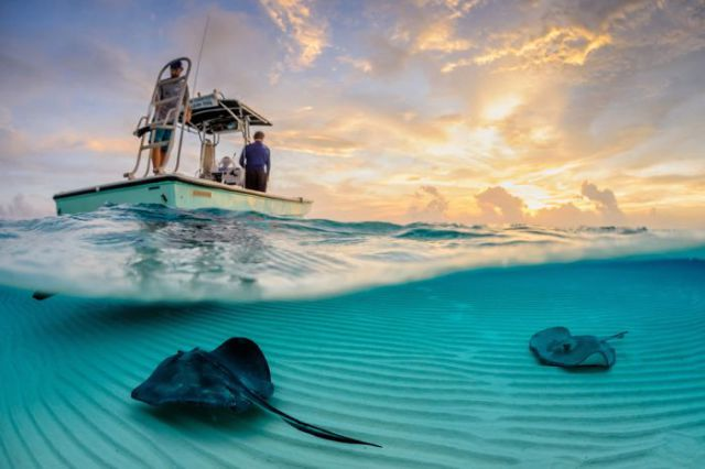 The Most Spectacular Photos from National Geographic's 2013 Photo Contest