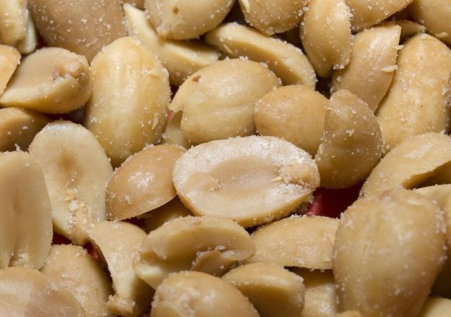 Truly Disgusting Things People Have Found in Their Food