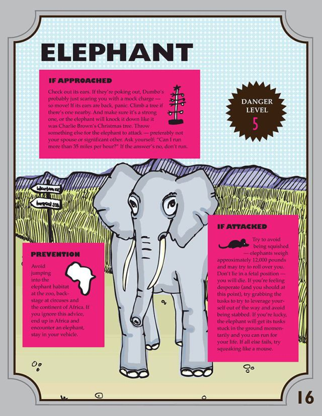 Amusing Survival Guides for Managing Wild Animal Encounters