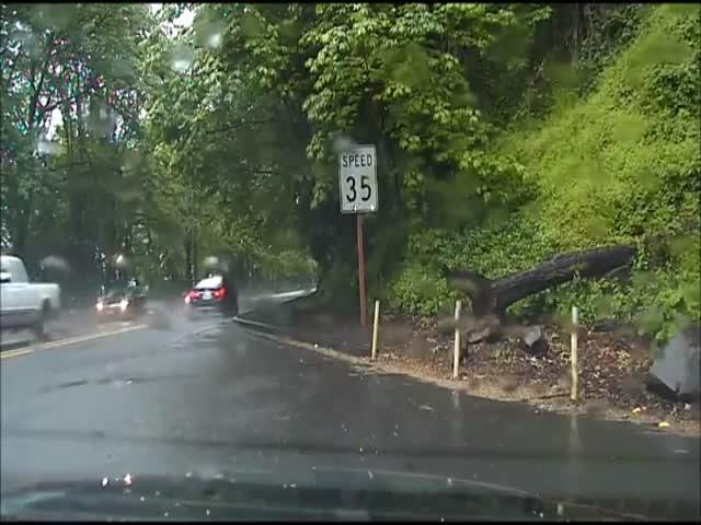Intense Police Pursuit in Portland – Dashcam POV