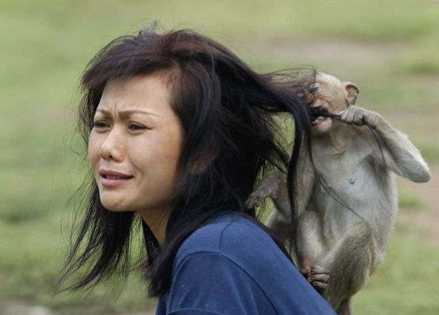 Women and Animals Don't Always Get Along
