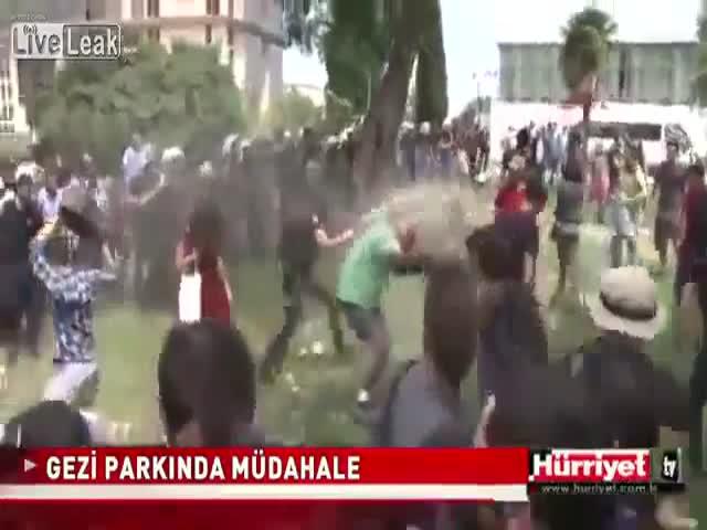 Crazy Pepper Spray Cop vs Protestors