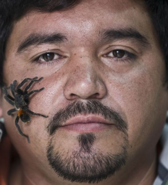 A Man Who Loves Spiders So Much That He Farms Them