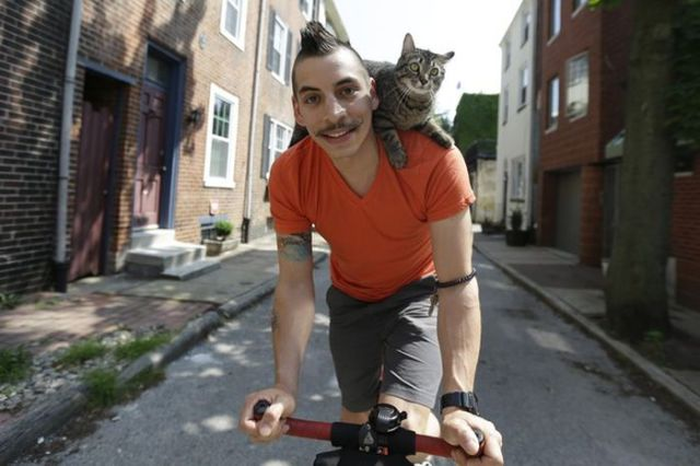 The Sweet Cat That Loves to Cycle