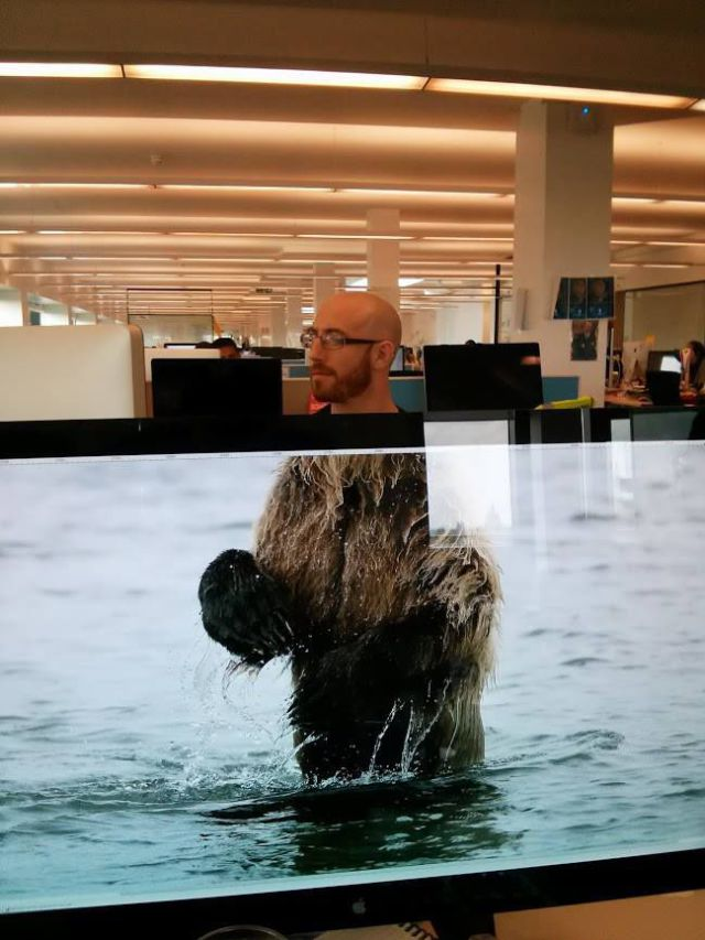 Photobombing Fun at the Office