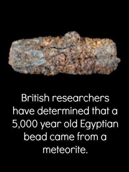 Scientific Facts That Are Simply Extraordinary