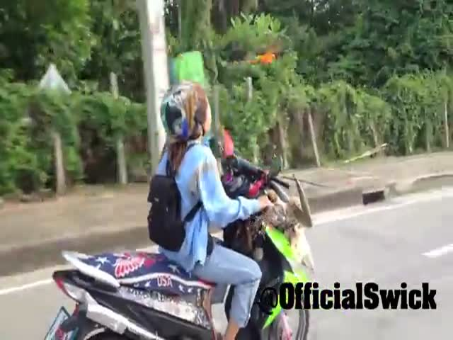 Pet Parrot Flies along Owner during Scooter Ride