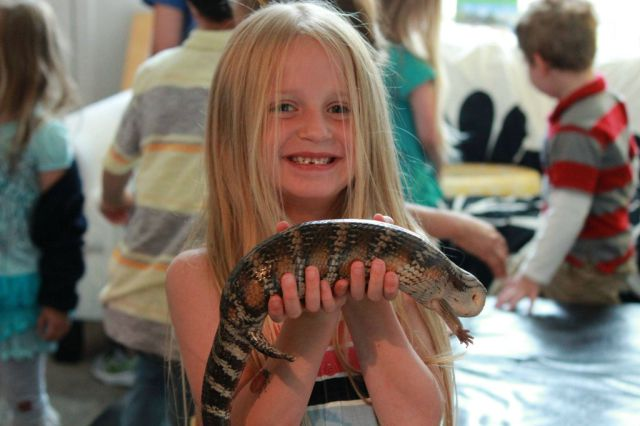 Educational Fun with Reptiles at Children's Party