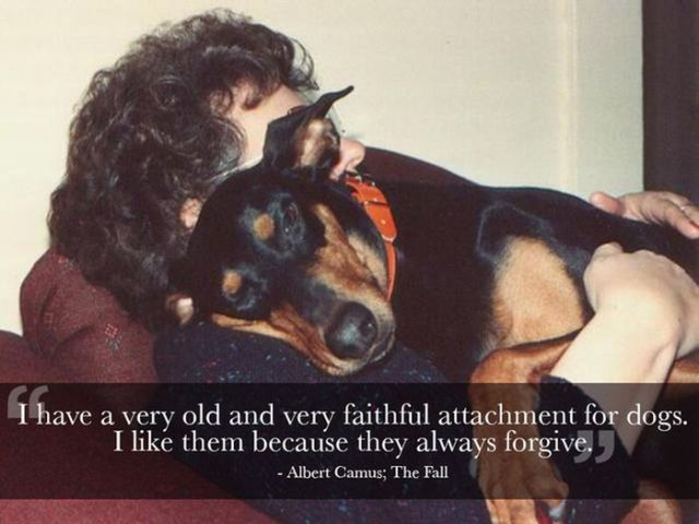 Cool Quotes That Will Make You Appreciate Your Pets