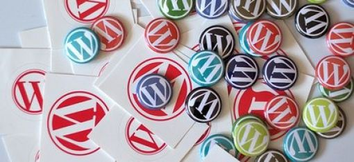 Here Are The Reasons of WordPress Development Popularity