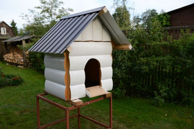 How to Make a Dog House from Scratch