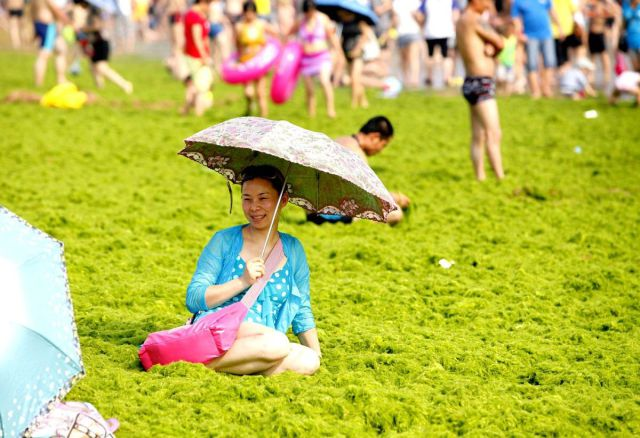 Just another Summer's Day Out in China