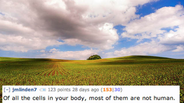 Disturbing and Revolting Facts about the Human Body