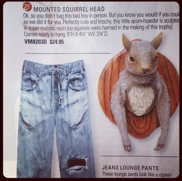 The Quirkiest and Oddest Items for Sale on Skymall