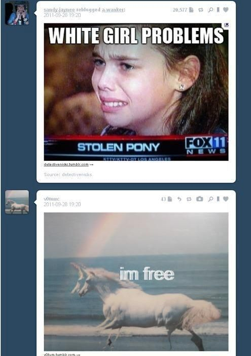 Random Perfectly Timed Tumblr Posts