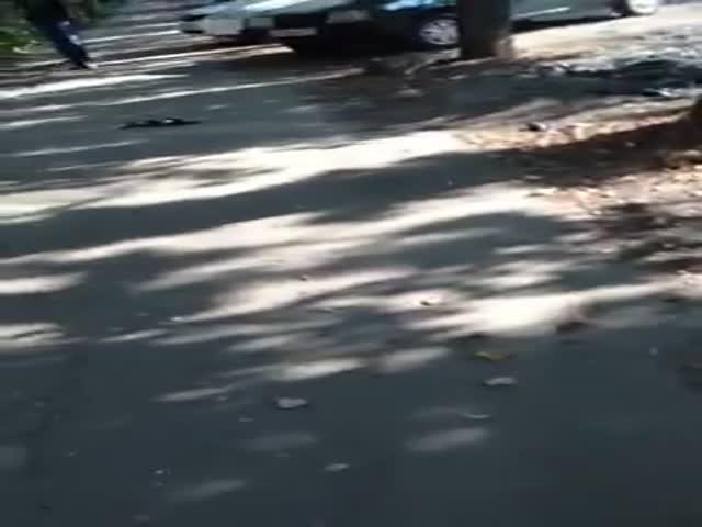 Drunk Dude Takes a Swim