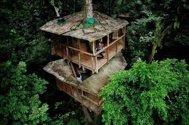 The Most Innovative Treehouses from around the World