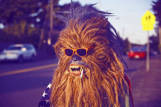 Wookiees Make an Appearance in the Real World