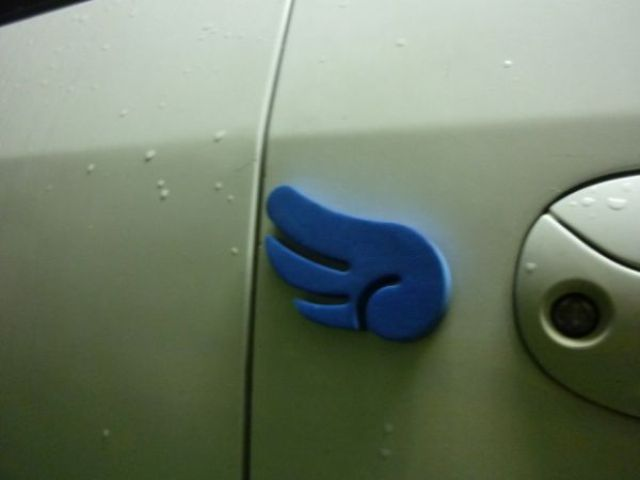 Weird Blue Sponges Cling to Cars in Korea