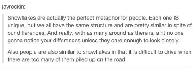 A Few Wise Words on Tumblr
