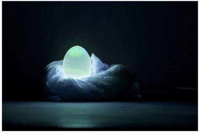 Unusual Homemade Egg Shell Light