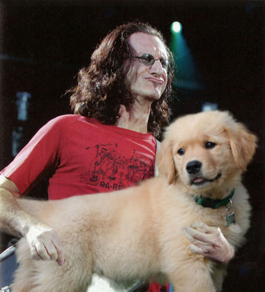 Let's Replace All the Guitars with Dogs... Rock On