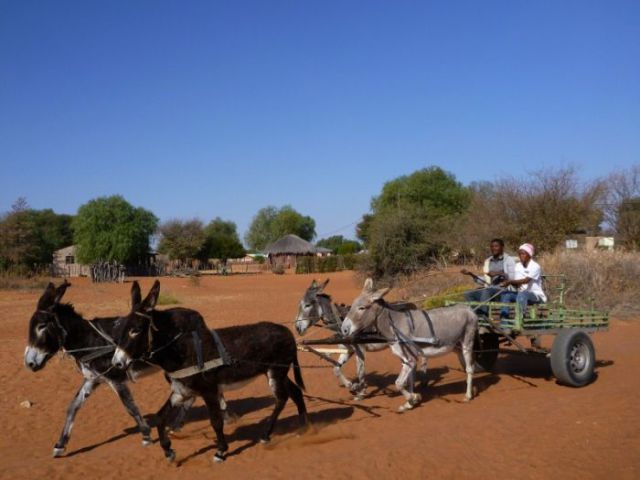 Traveling across Africa