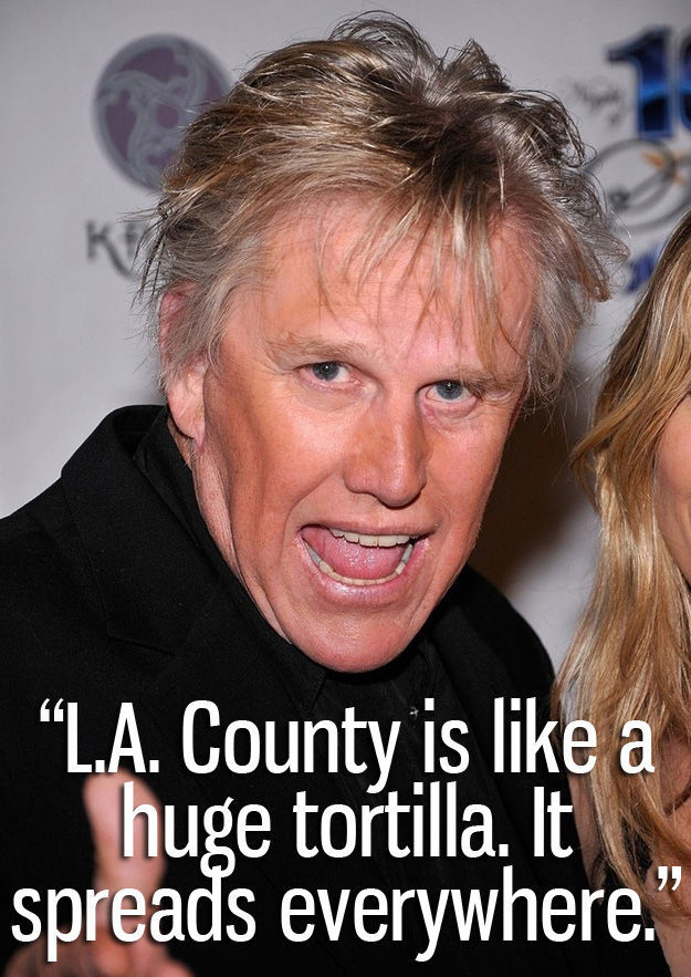 The Funniest Quotes from Gary Busey