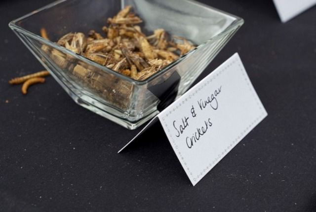 "Rentokil Celebrates 85 Years in Business with a ""Creepy-Crawly"" Lunch"