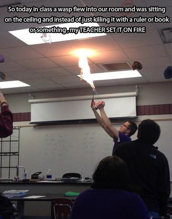 Teachers Who Should Get a Prize for Being Awesome
