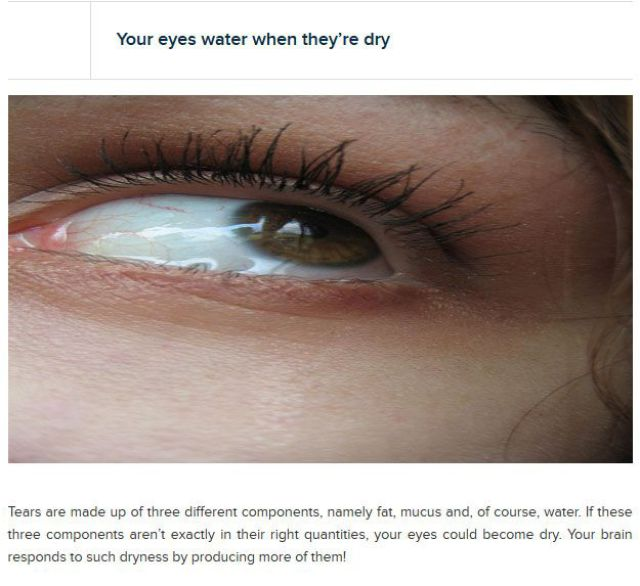 Things That You Didn't Know about Your Eyes
