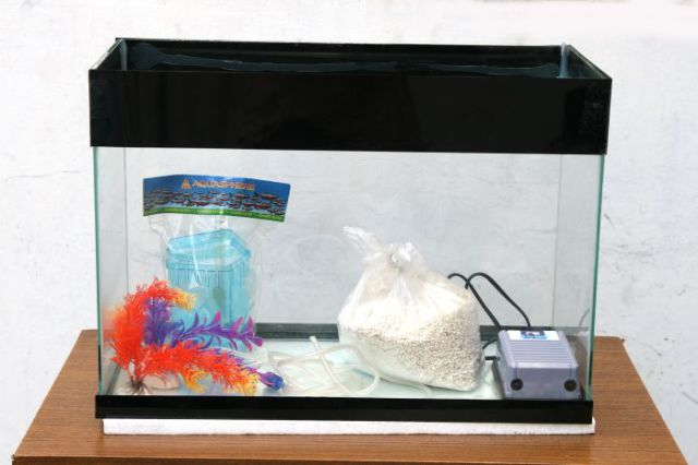 Old TV Turned into Awesome Aquarium