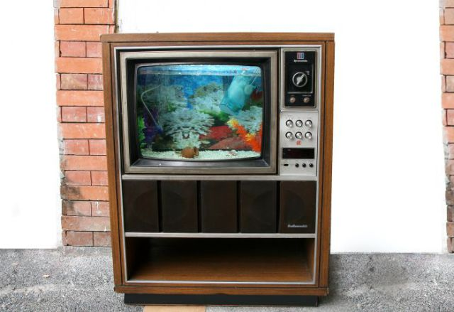 Old TV Turned into Awesome Aquarium