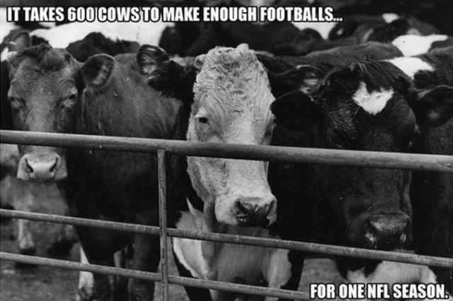 Facts for Football Fans