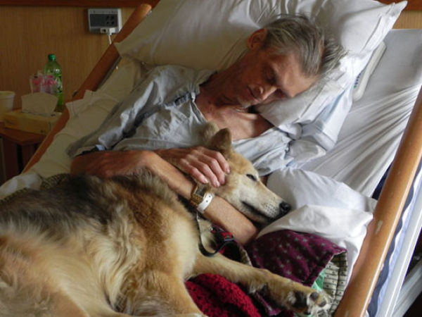 Why Dogs are the Greatest Friend a Man Could Have
