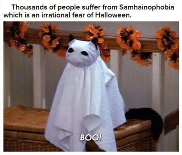 A Little Halloween Holiday Trivia