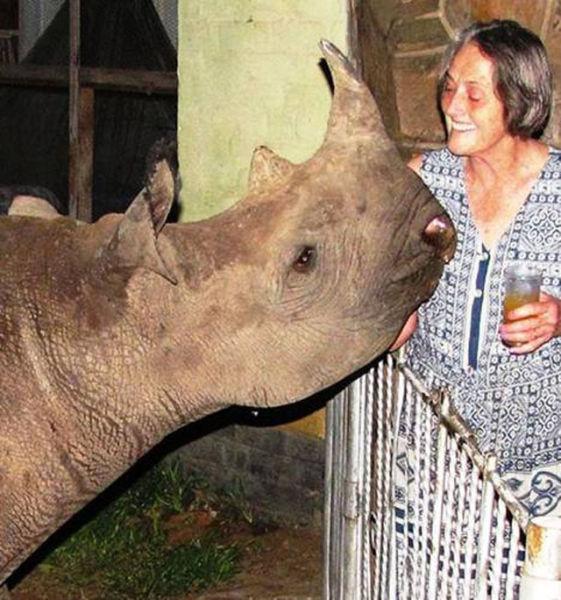 Special Bonds between Humans and Wild Animals