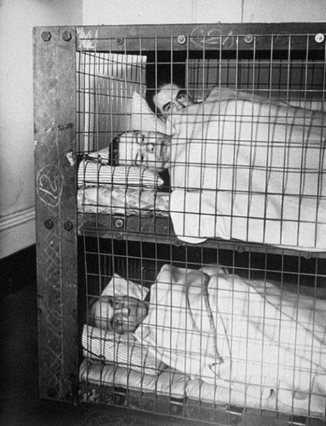 A Popular Indoor Home Shelter from the War Years